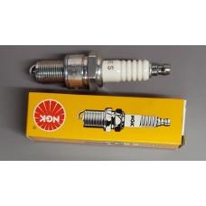 NGK Spark Plug  (std)